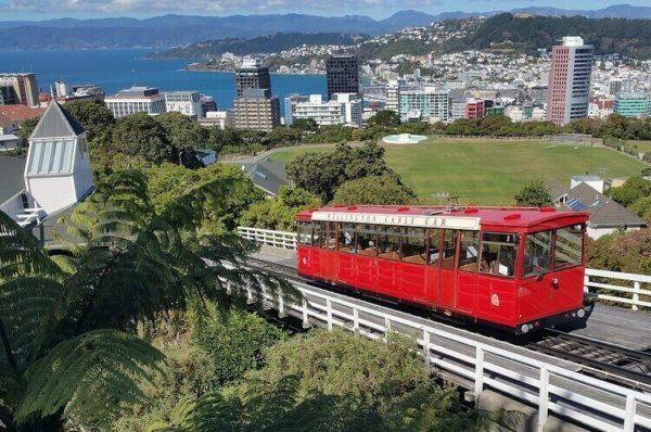 ニュージーランド 大学
