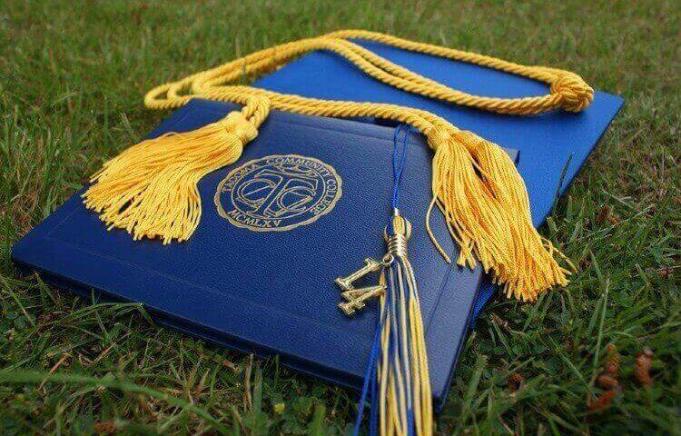 卒業 大学